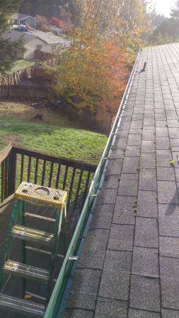Roof Cleaning in Port Orchard