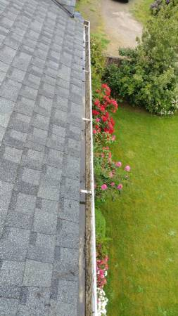 Gutter Clean in Port Orchard
