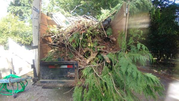 Picked up Yard Waste from Port Orchard