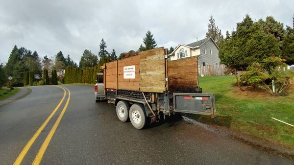 Loaded up shrubs in Port Orchard.