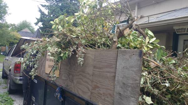 Yard Waste Removal Port Orchard