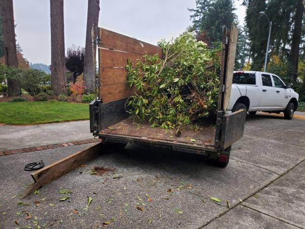 Loaded up Yard waste in Silverdale Washington